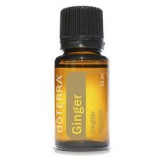 Aceite de Jengibre - Ginger 15 ml